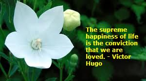 white flower happiness quote